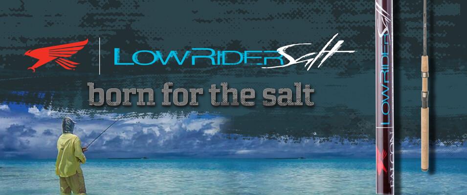 Falcon LowRider Salt Spinning