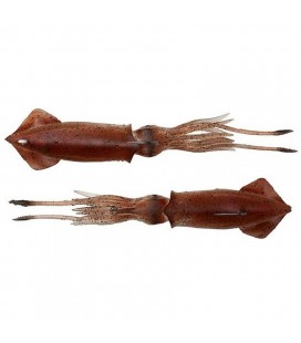 Savage Gear 3D Swim Squid - Brown UV