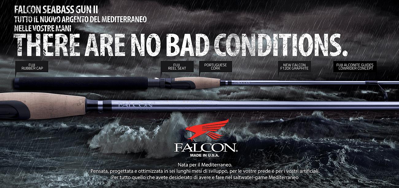 Falcon Seabass Gun II